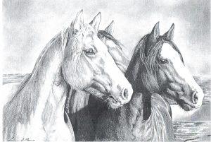 Desenho de cavalo 2 001