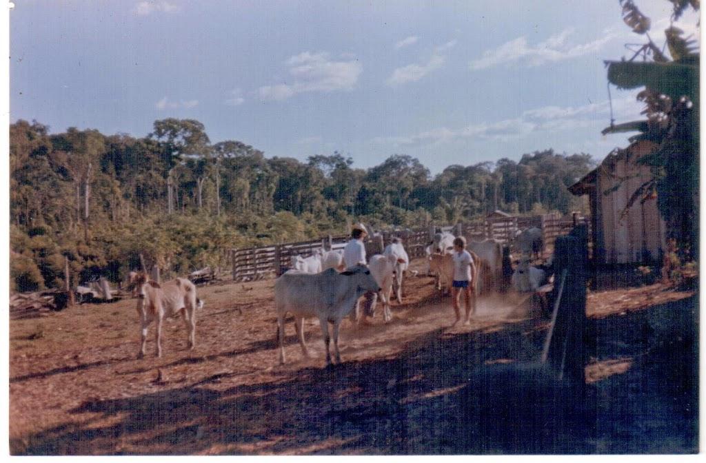 Mangueira de gado do meu irmão Agileu