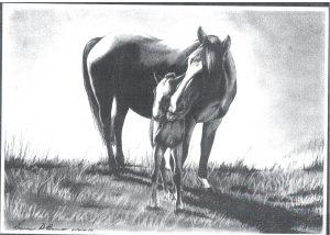 Desenho de cavalo 1 001